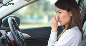 Запах нового автомобиля нравится далеко не всем